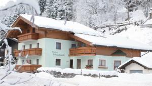 Wintersport - Ski - Pension Böhmerwald - Hinterglemm - Saalbach-Hinterglemm - Oostenrijk