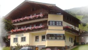 Wintersport - Ski - Appartementen Birkenhof - Saalbach - Saalbach-Hinterglemm - Oostenrijk