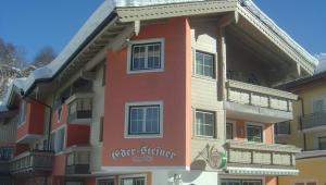 Wintersport - Ski - Appartementen Eder Steiner - Saalbach - Saalbach-Hinterglemm - Oostenrijk