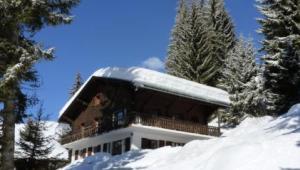 Wintersport - Ski - Chalet Le Dahu Haut - Verbier - Les Quatre Vallées - Zwitserland